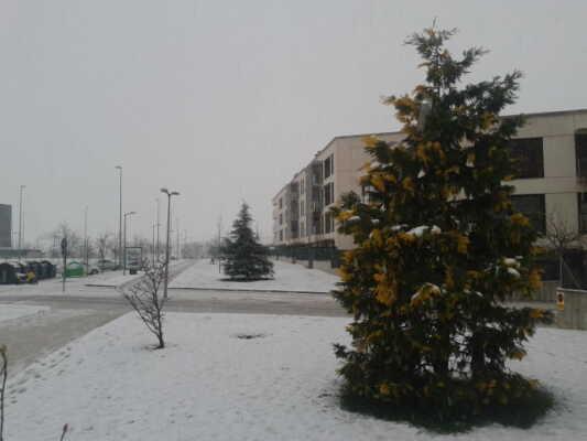 nieve en Sarriguren