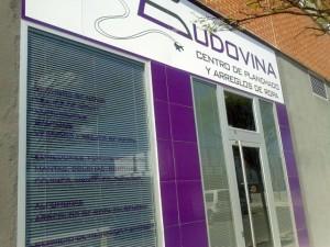 Centro de polanchado Ludovina