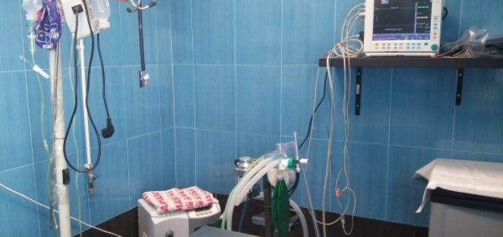 Clínica Veterinaria Sarriguren