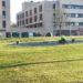 Se plantarán 400 árboles en el parque central de Sarriguren el próximo Día del Árbol